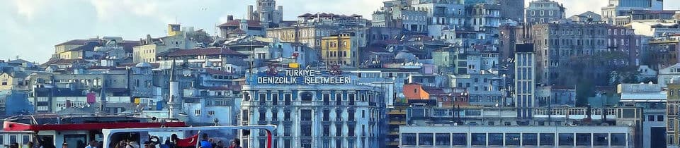 Pictured: skyline of Istanbul