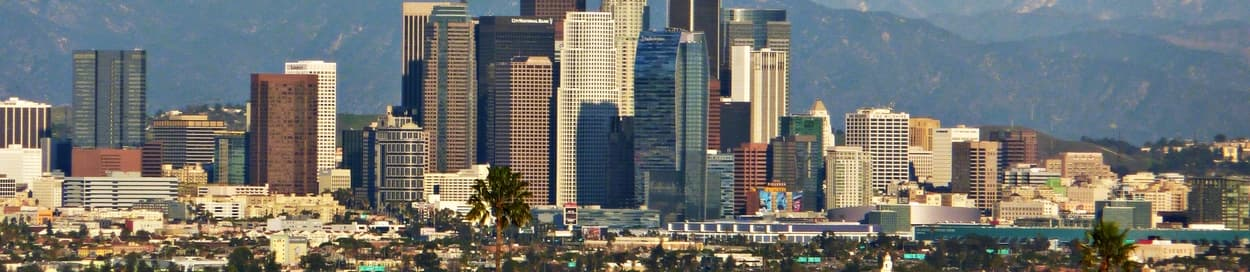 Pictured: skyline of Anaheim