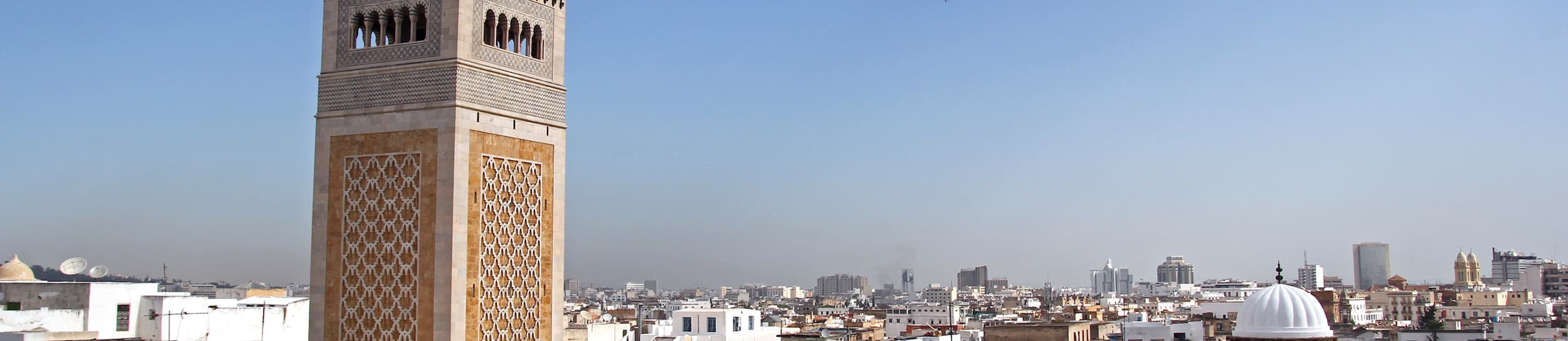 Pictured: skyline of Tunis