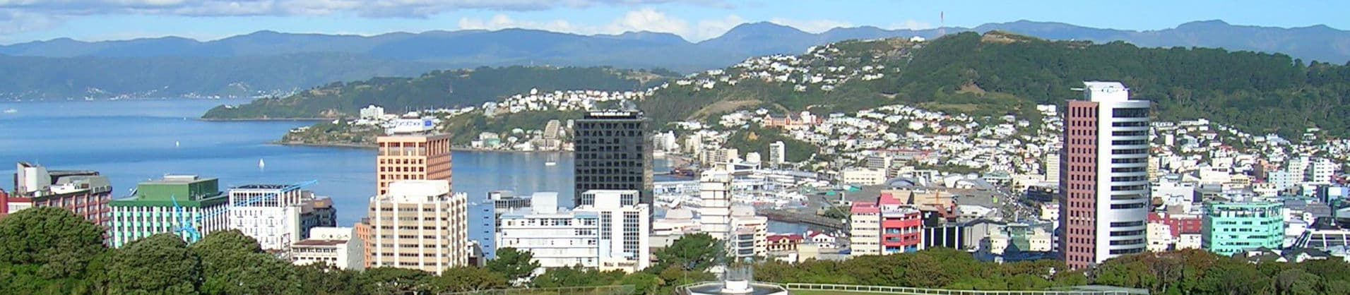 Pictured: skyline of Wellington